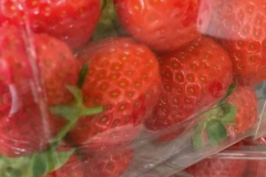 langholm strawberries